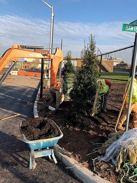 tree-planting-equipment
