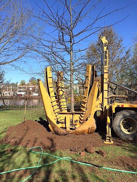 tree-transplanting-equipment