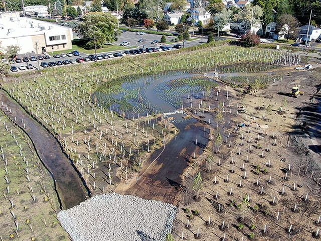 wetlands-mitigation